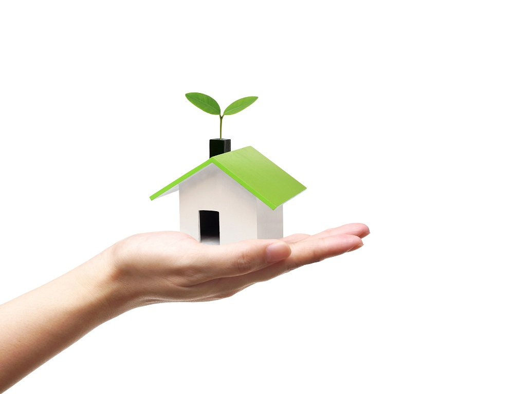 hand holding a tiny green house with a plant growing from the roof
